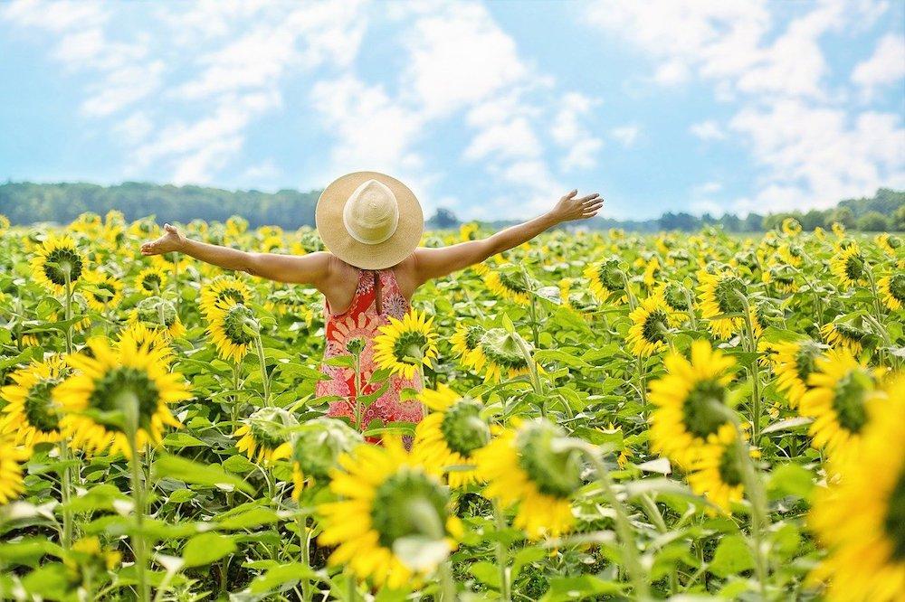 one small step toward joy finding joy in beauty, joy